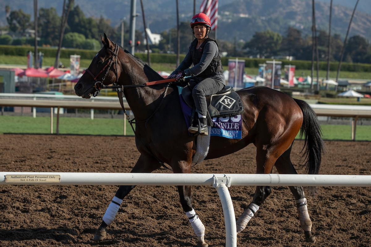 Dennis' Moment  and Blue Chipper an intriguing Breeders' Cup duo for Tiznow title=