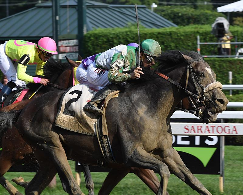 Tiznow colt gets elusive first stakes win title=