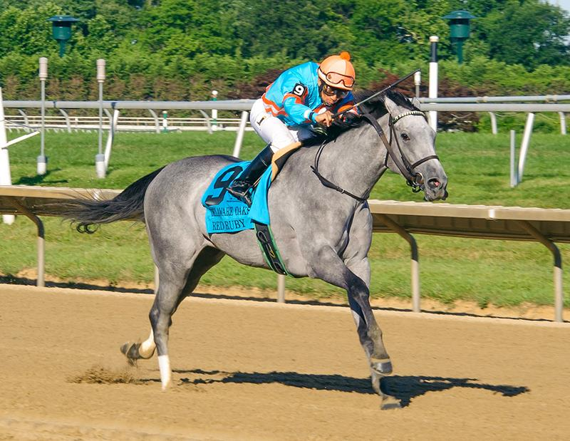 Tiznow's Red Ruby romps by 13 in Delaware Oaks (G3) title=
