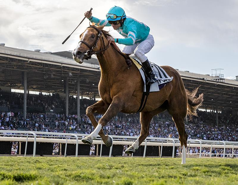 Uni (GB) gives More Than Ready a record seventh Breeders' Cup win title=