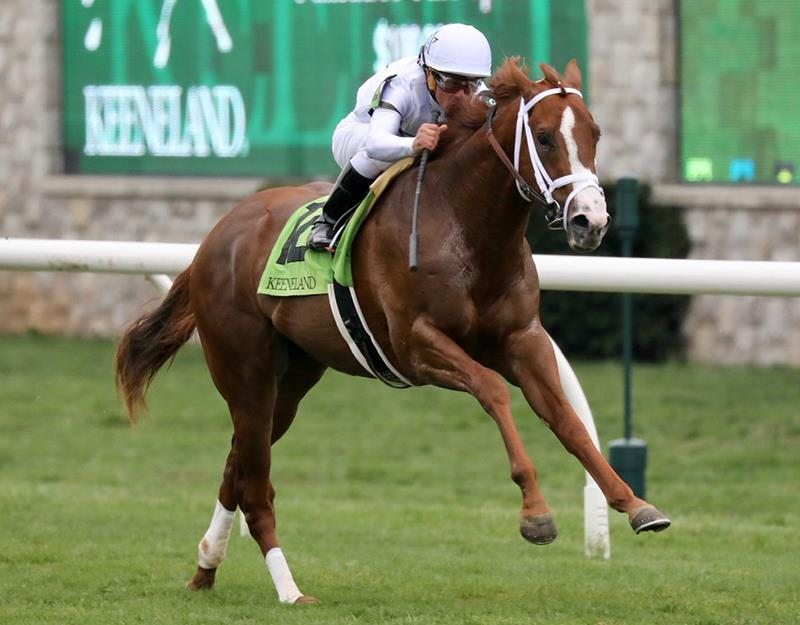 Bulletin remains undefeated with sharp score in Palisades Turf Sprint at Keeneland title=