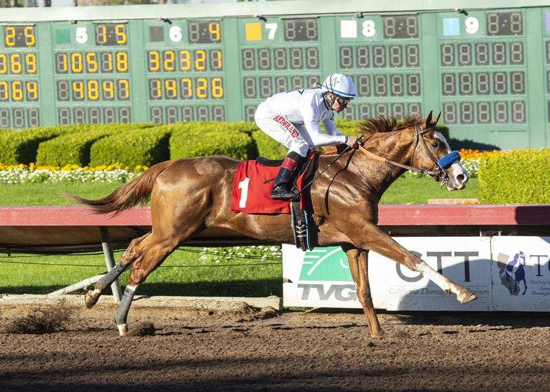 Undefeated Improbable superb in Los Alamitos Futurity (G1) title=