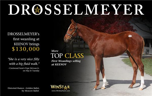 139935-Drosselmeyer-half-TDN-proof
