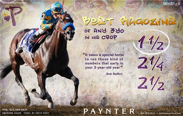 140497-Paynter-half-TDN-proof