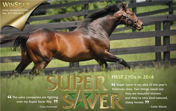 141547-SuperSaver-half-TDN-proof