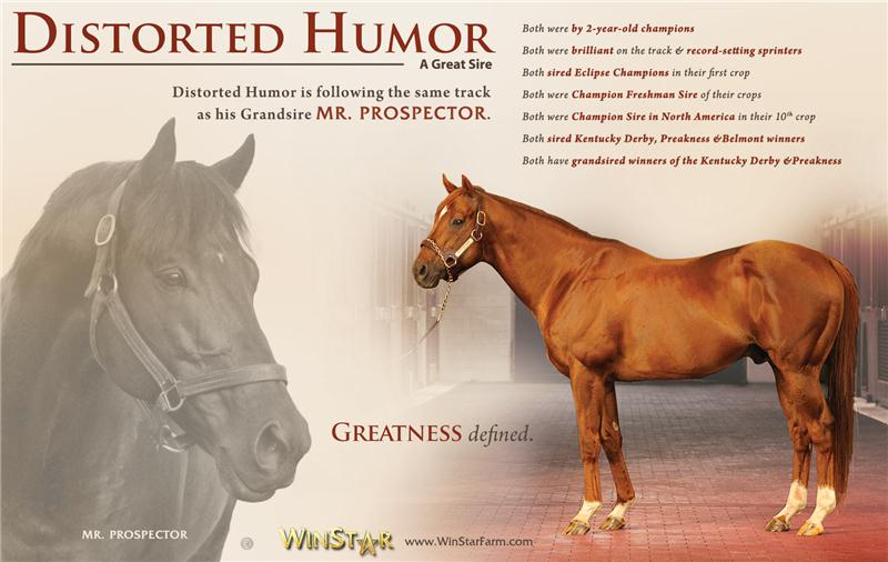 144956-DistortedHumor-half-TDN-proof