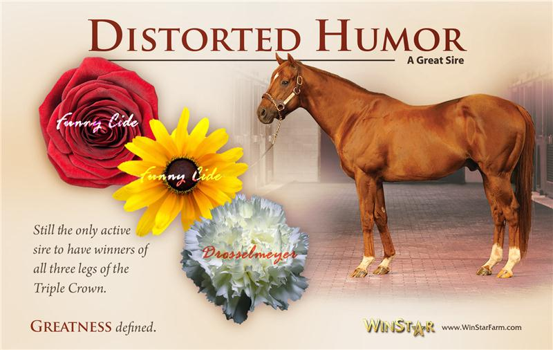 145742-DistortedHumor-half-TDN-proof