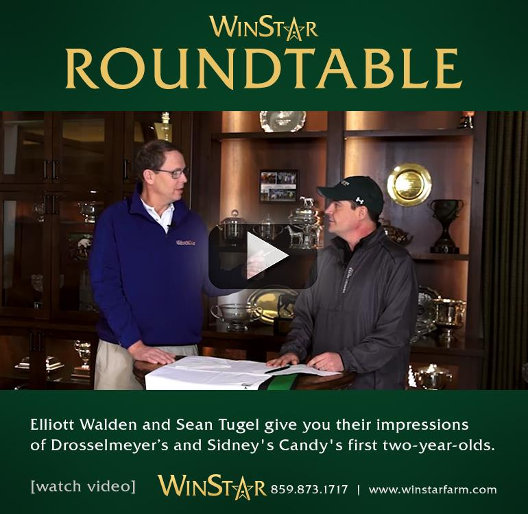 153132-WinStarRoundtable-cvrBanner-TDN-proof