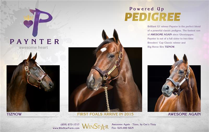 153141-Paynter-half-TDN-proof