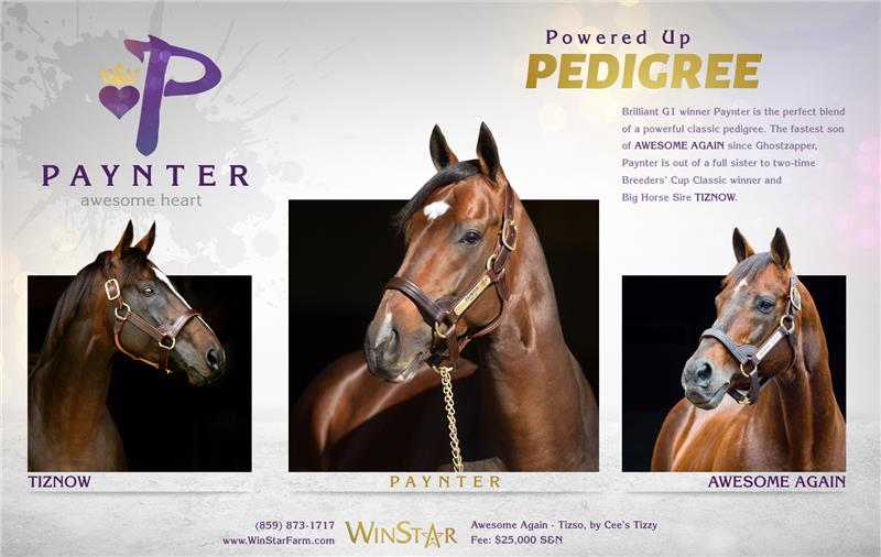 153573-Paynter-half-TDN-01-proof