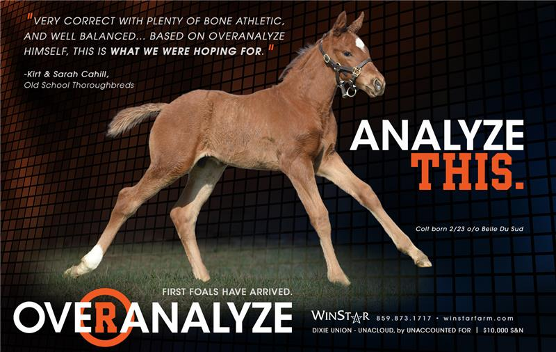 153907-Overanalyze-half-TDN-proof