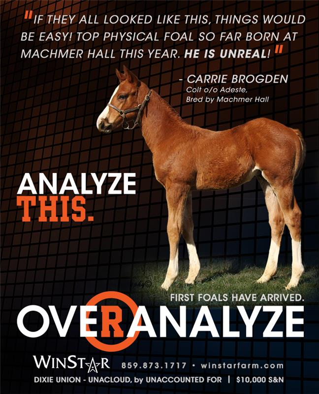 155049-Overanalyze-qtr-TDN-proof3