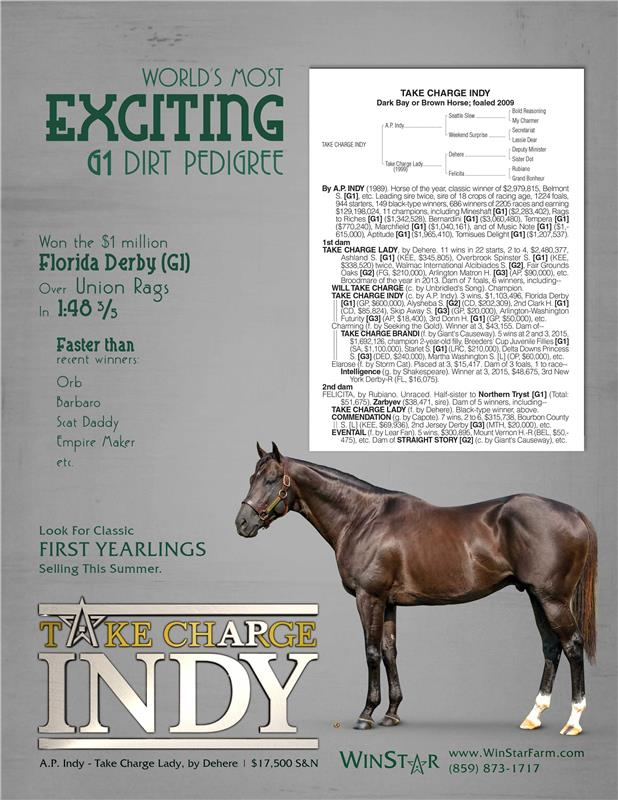 163626-TakeChargeIndy-InsideFront-TDN