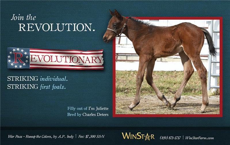 163939-Revolutionary-half-V2-TDN