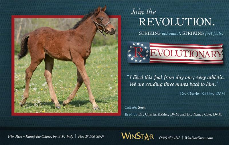 165076-Revolutionary-half-TDN