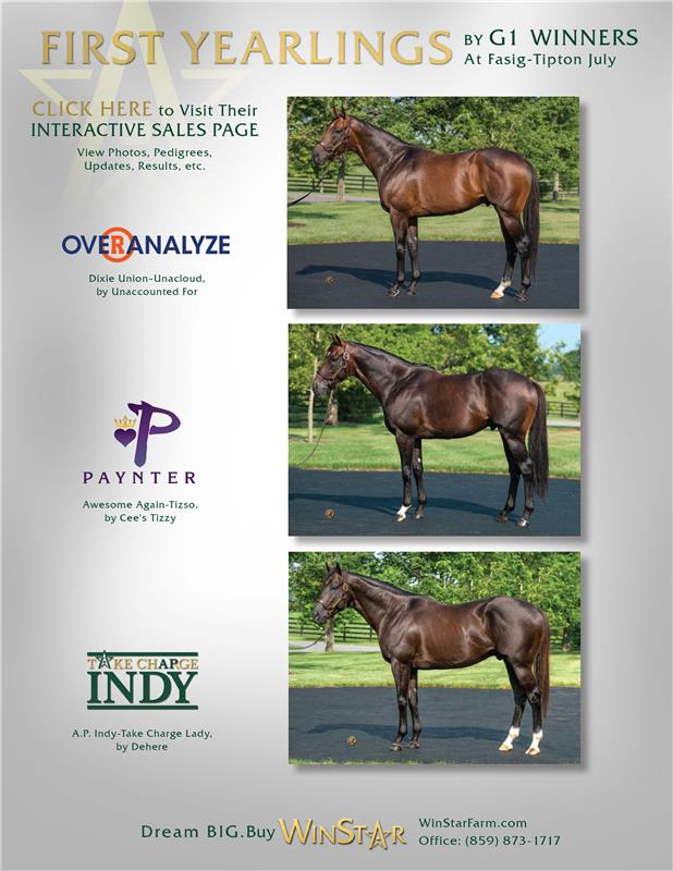 167177-WinStar1stYearlings-TDN