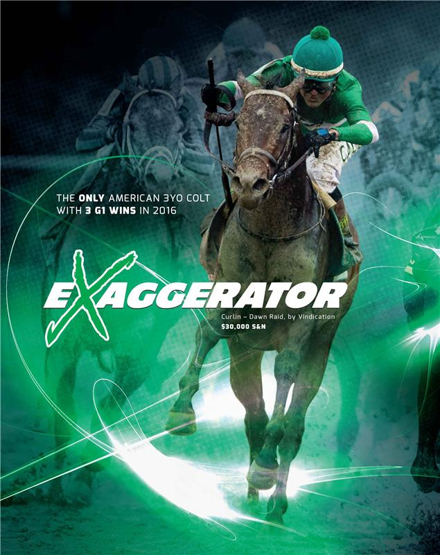 171061-Exaggerator-2PS-Majestic-FINAL-1