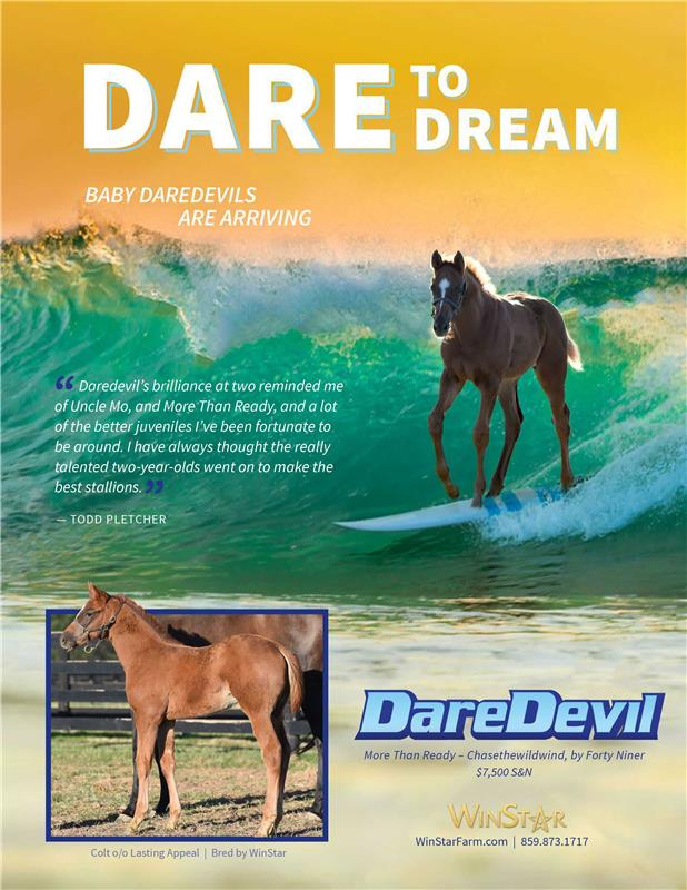 173257-Daredevil-TDN-proof3