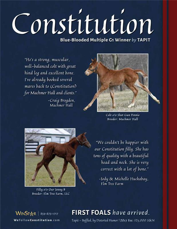 173579-Constitution-TDN-proof