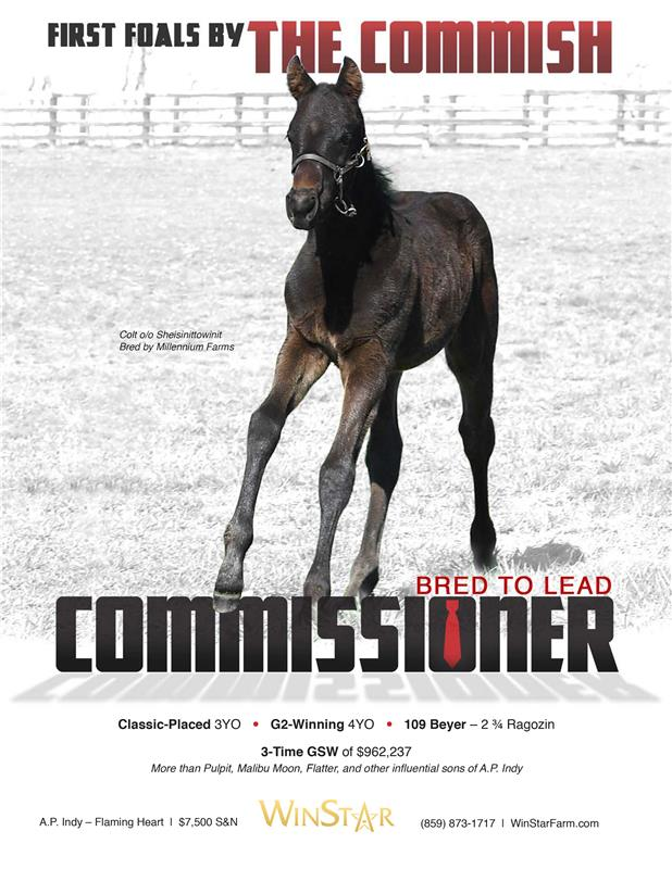 173728-Commissioner-TDN-proof