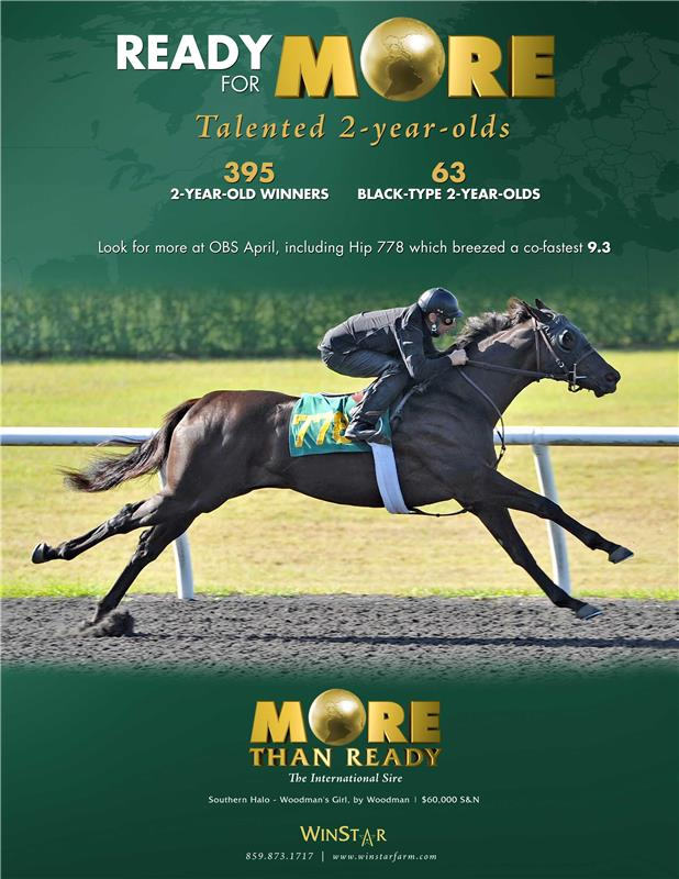 174100-MoreThanReady-TDN-proof