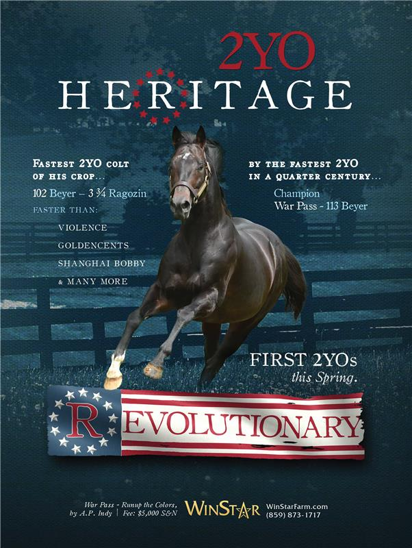 182990-Revolutionary-DRFsupplement-FINAL