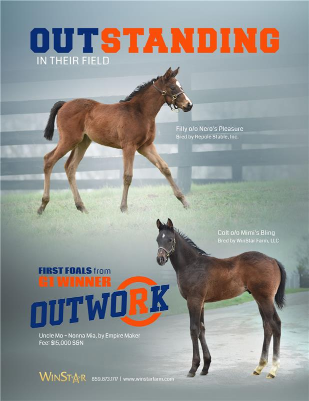 184206-Outwork-TDN