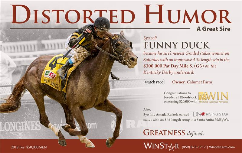 184645-DistortedHumor-half-TDN-FINAL