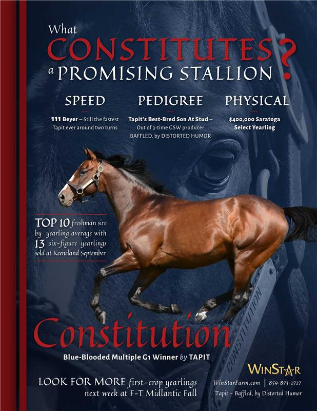 187948-Constitution-TDN-FINAL