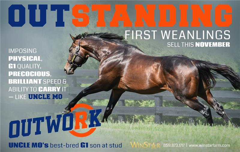 188509-Outwork-half-TDN