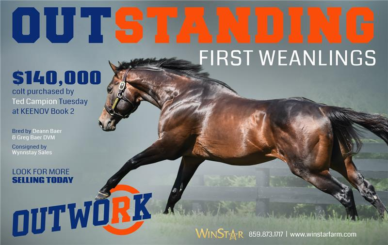 188909-Outwork-half03-TDN