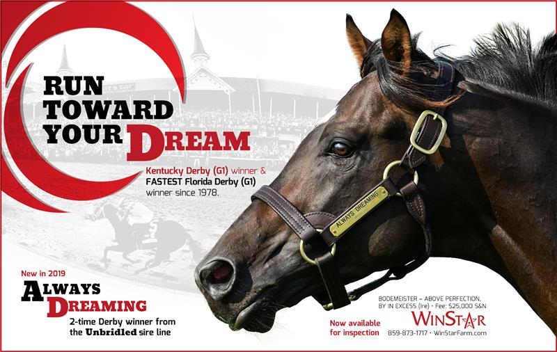 188974-AlwaysDreaming-half-TDN-V2-FINAL
