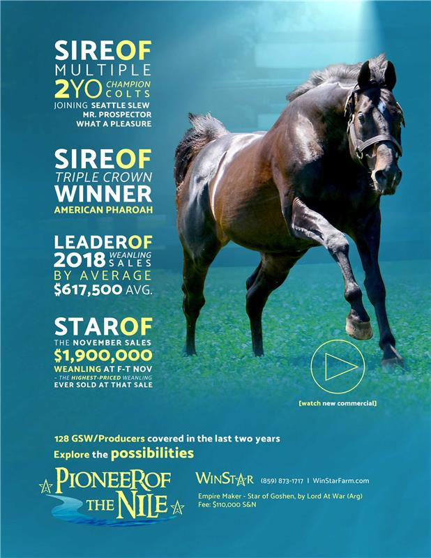 189334-PioneerofTheNile-TDN-FINAL