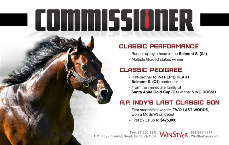 192967-Commissioner-half-TDN and BHD