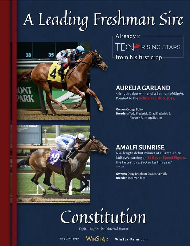 193053-Constitution-TDN-FINAL