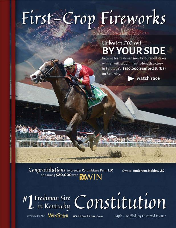 193449-Constitution-BHD-FINAL