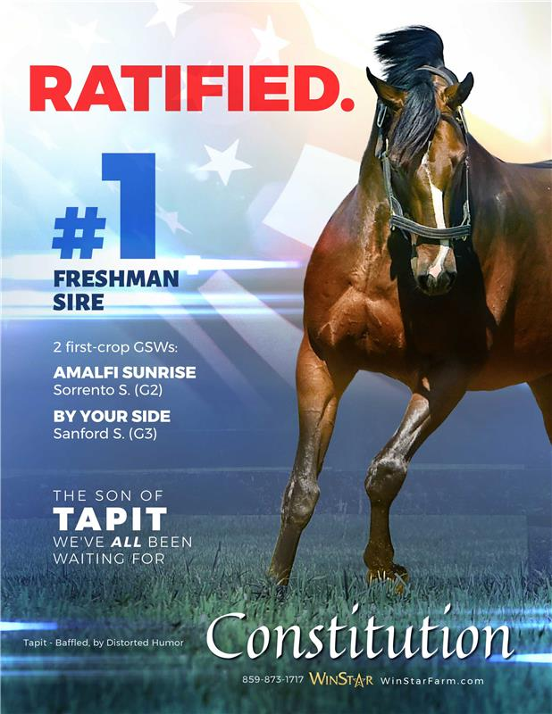 193778-Constitution-Ratified-full02-TDN-FINAL