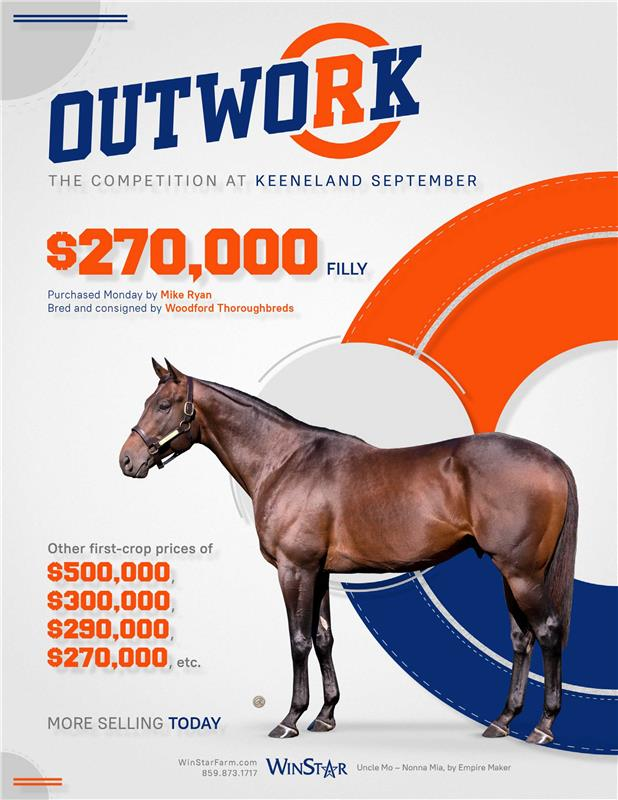 194399-Outwork-TDN