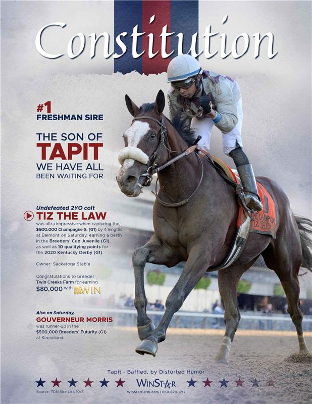 194452-Constitution-TDN-FINAL