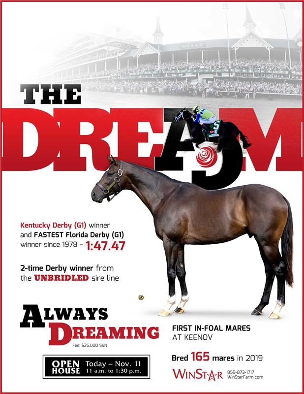 195386-AlwaysDreaming-TDN-FINAL