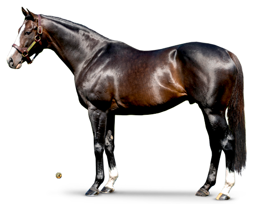 Tourist - Fastest Breeders' Cup Mile (G1)<br> Winner Ever