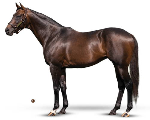 Colonel John - Top-Ranked Third Crop Sire of Winners