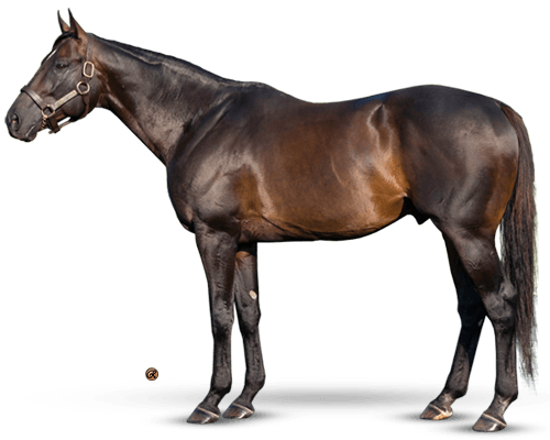 Pioneerof the Nile - TWO 2YO CHAMPION COLTS FROM 4 CROPS