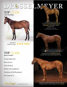 139681-Drosselmeyer-TDN-proof