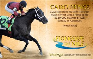 140078-PioneerofTheNile-half-TDN-proof