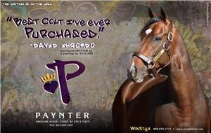 140495-Paynter-half-TDN3-proof
