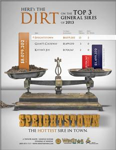 140613-Speightstown-TDN-proof
