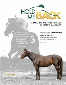 143450-HoldMeBack-TDN-proof