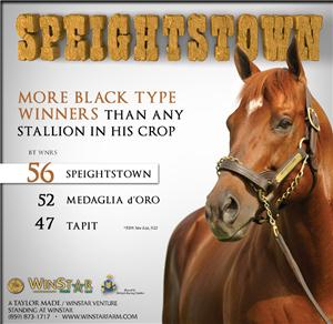 144962-Speightstown-cvrBanner-TDN-proof