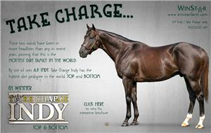 151463-TakeChargeIndy-half-TDN-proof5